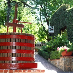 Barossa-Exclusive-Tours-Gallery_0002_33