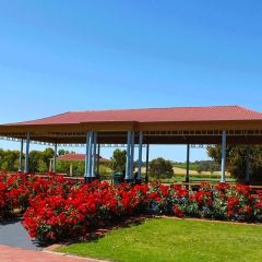 Barossa-Exclusive-Tours-Gallery_0010_41
