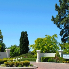 Barossa-Exclusive-Tours-Gallery_0012_43