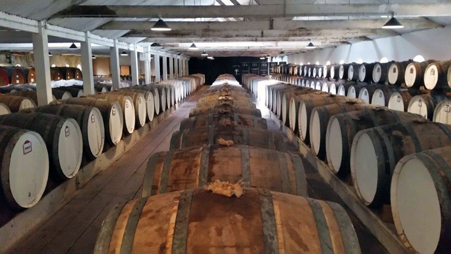 Seppeltsfeild Barrels